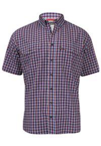 Wielokolorowa koszula casual Jurel z krótkim rękawem, krótka, z klasycznym kołnierzykiem
