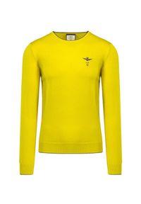 Aeronautica Militare - Sweter wełniany AERONAUTICA MILITARE. Kolor: żółty. Materiał: wełna. Wzór: haft, prążki. Sezon: zima. Styl: klasyczny