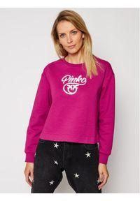 Fioletowa bluza Pinko