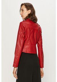 Czerwona kurtka Morgan klasyczna, z klasycznym kołnierzykiem, na co dzień