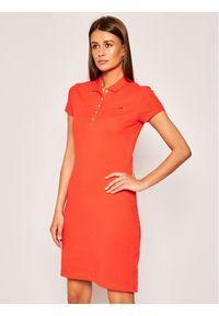 Pomarańczowa sukienka TOMMY HILFIGER casualowa, na co dzień