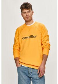Żółta bluza nierozpinana CATerpillar bez kaptura, casualowa, na co dzień