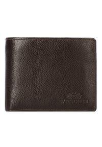 Wittchen - Męski portfel skórzany z wyjmowanym panelem. Kolor: czarny. Materiał: skóra