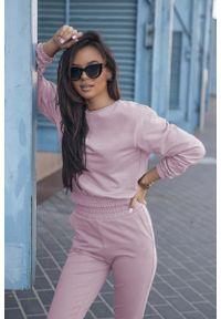 Różowa bluzka z długim rękawem IVON