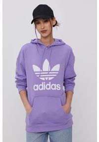 Bluza adidas Originals z kapturem, z nadrukiem