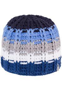 Niebieska czapka zimowa 4f na jesień #1