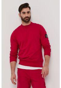 Różowa bluza nierozpinana Calvin Klein Jeans na co dzień, casualowa, bez kaptura, gładkie