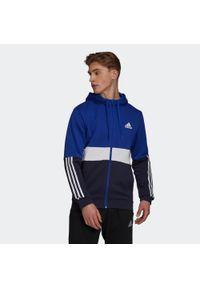 Adidas - Bluza fitness męska. Materiał: bawełna, wiskoza, poliester. Sport: fitness