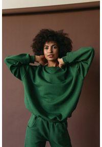 Marsala - Bluza damska o kroju regular fit w kolorze HUNTER DARK GREEN - BASKET BY MARSALA. Materiał: dresówka, bawełna, jeans, dzianina, poliester. Sezon: lato, jesień, wiosna, zima. Styl: klasyczny