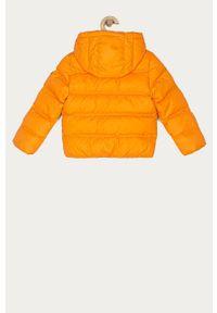 Pomarańczowa kurtka TOMMY HILFIGER casualowa, na co dzień, z kapturem