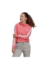 Adidas - Bluza damska adidas Essentials 3S Cropped Hoodie GM5585. Materiał: bawełna, wiskoza, materiał, poliester. Wzór: paski