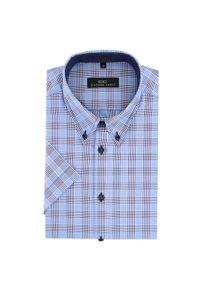 Koszula Giacomo Conti button down, z krótkim rękawem, krótka, klasyczna