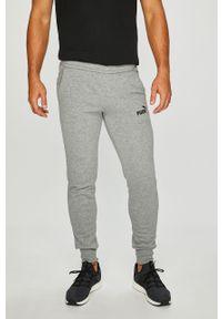 Szare spodnie dresowe Puma