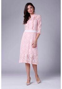 Nommo - Różowa Ecru Lekko Rozkloszowana Sukienka Koronkowa ze Stójką. Typ kołnierza: kołnierzyk stójkowy. Kolor: różowy. Materiał: koronka