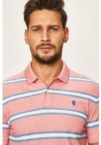 Różowa koszulka polo Izod na co dzień, casualowa, krótka
