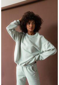Marsala - Bluza damska o kroju regular fit w kolorze MILKY GREEN - BASKET BY MARSALA. Materiał: dresówka, bawełna, jeans, dzianina, poliester. Sezon: lato, jesień, wiosna, zima. Styl: klasyczny