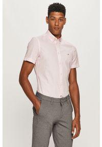 Różowa koszula TOMMY HILFIGER krótka, elegancka, na co dzień, button down