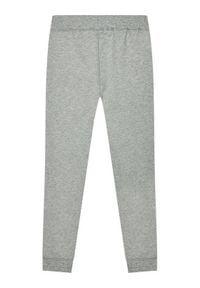 Name it - NAME IT Spodnie dresowe Bru Noos 13153665 Szary Regular Fit. Kolor: szary. Materiał: dresówka