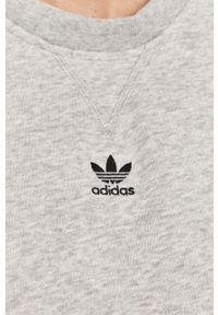 Szara bluza adidas Originals z długim rękawem, bez kaptura