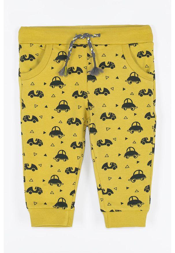 Żółte spodnie dresowe COCCODRILLO