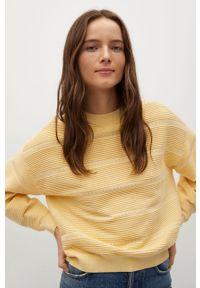Żółty sweter mango gładki