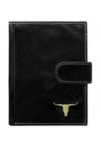 BUFFALO WILD - Portfel męski Buffalo Wild czarny RM-03L-BAW 2. Kolor: czarny. Materiał: skóra