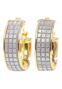 Braccatta - ALIX Kolczyki złote koła małe błyszczące. Materiał: złote. Kolor: złoty. Wzór: gładki. Kamień szlachetny: diament