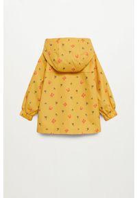 Żółta kurtka Mango Kids na co dzień, casualowa, z kapturem