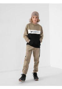 4f - Spodnie dresowe joggery chłopięce. Kolor: brązowy. Materiał: dresówka