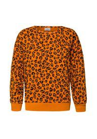 Pomarańczowa bluza Deha z okrągłym kołnierzem, casualowa, na co dzień, w kolorowe wzory