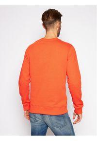Pomarańczowa bluza Calvin Klein Jeans