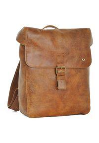 Skórzany plecak na laptopa unisex DAAG Jazzy Wanted 96 jasnobrązowy. Kolor: brązowy. Materiał: skóra