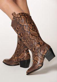 Born2be - Wężowe Kozaki Tierra. Nosek buta: szpiczasty. Zapięcie: zamek. Kolor: brązowy. Szerokość cholewki: szeroka. Obcas: na obcasie. Wysokość obcasa: średni