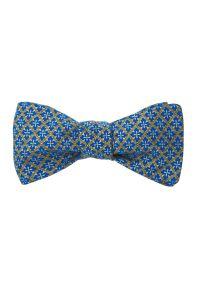 Niebieska muszka Krago