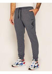 Szare spodnie dresowe Emporio Armani Underwear