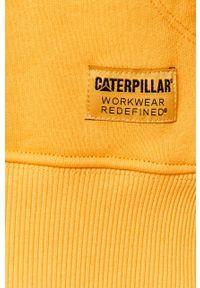 Żółta bluza nierozpinana CATerpillar z nadrukiem, z kapturem