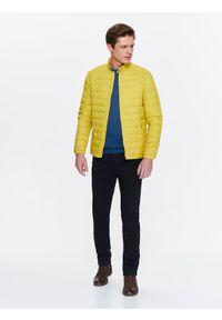 Żółta kurtka TOP SECRET w kolorowe wzory, ze stójką, na wiosnę