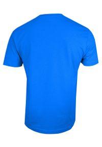 Stedman - Błękitny Bawełniany T-Shirt Męski Bez Nadruku -STEDMAN- Koszulka, Krótki Rękaw, Basic, U-neck. Okazja: na co dzień. Kolor: niebieski. Materiał: bawełna. Długość rękawa: krótki rękaw. Długość: krótkie. Styl: casual