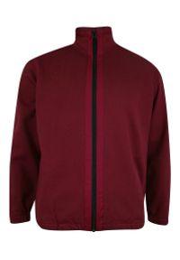 Czerwony sweter Kings na jesień, ze stójką