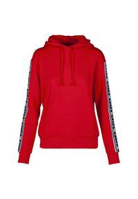 Bluza damska Diadora L. Hoodie Trofeo 502.175816. Typ kołnierza: kaptur. Materiał: bawełna #1