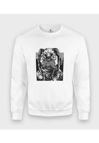 MegaKoszulki - Bluza klasyczna Mops z buźką. Styl: klasyczny