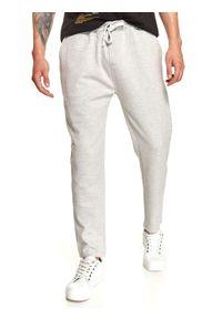 TOP SECRET - Spodnie dresowe joggery. Kolor: szary. Materiał: dresówka