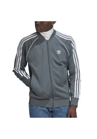 Bluza Adidas klasyczna