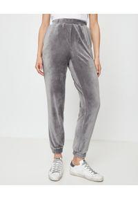 THECADESS - Szare spodnie welurowe Baltic. Kolor: szary. Materiał: welur. Długość: długie
