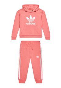 Różowy dres adidas Originals