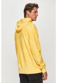 Żółta bluza nierozpinana TOMMY HILFIGER casualowa, na co dzień, z aplikacjami