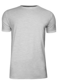 Szary Bawełniany T-Shirt Męski Bez Nadruku -Brave Soul- Koszulka, Krótki Rękaw, Basic. Okazja: na co dzień. Kolor: szary. Materiał: wiskoza, bawełna. Długość rękawa: krótki rękaw. Długość: krótkie. Sezon: wiosna, lato. Styl: casual