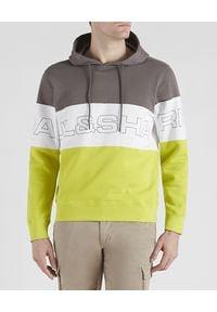 PAUL & SHARK - Kolorowa bluza z kapturem z bawełny. Typ kołnierza: kaptur. Kolor: szary. Materiał: bawełna. Długość rękawa: długi rękaw. Długość: długie. Wzór: kolorowy. Styl: sportowy