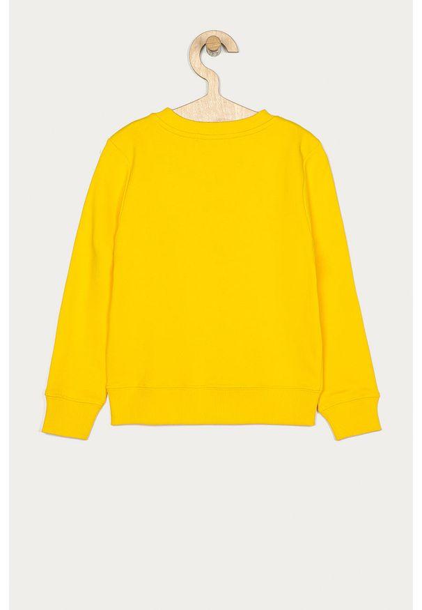 Żółta bluza Calvin Klein Jeans casualowa, z nadrukiem