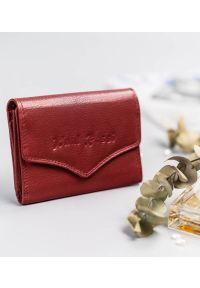 Portfel damski czerwony Paul Rossi PN1405-SP RED. Kolor: czerwony. Materiał: skóra